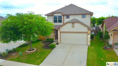 San Marcos Single Family Home For Sale: 306 Hay Barn