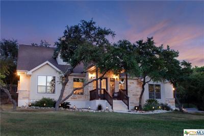 San Antonio Single Family Home For Sale: 718 Dulcinea Drive