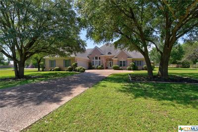 New Braunfels Single Family Home For Sale: 2403 Welsch