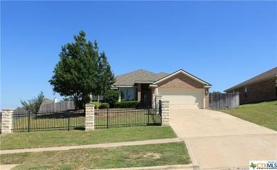 Killeen Single Family Home For Sale: 4910 Lightning Rock