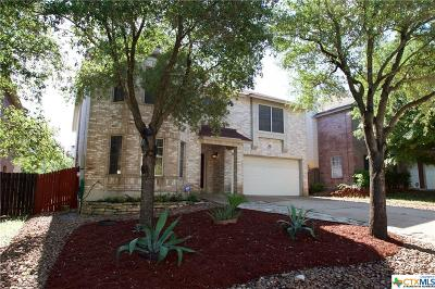 Austin Single Family Home For Sale: 11317 Blairview