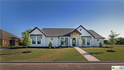 Single Family Home For Sale: 713 Norfolk Dr.