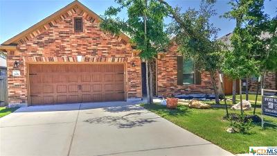 San Marcos Single Family Home For Sale: 806 Foxtail Run