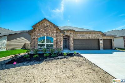 New Braunfels Single Family Home For Sale: 833 Gray Cloud Drive
