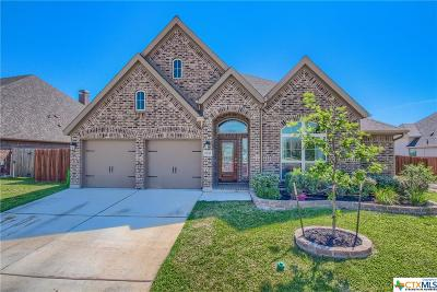 Seguin Single Family Home For Sale: 2943 Coral Sky