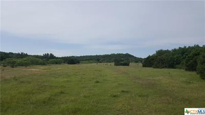 Coryell County Residential Lots & Land For Sale: 543 County Road 385
