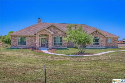 New Braunfels Single Family Home For Sale: 342 Schumans Beach