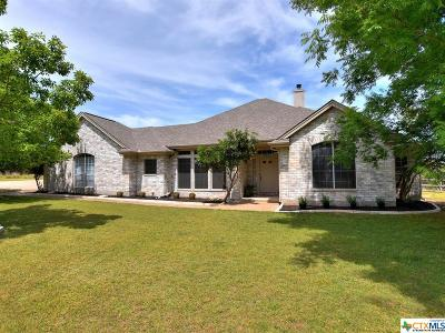 Austin Single Family Home For Sale: 16499 Westview