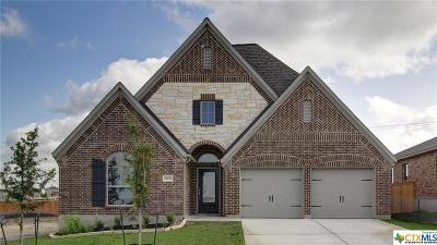 San Antonio Single Family Home For Sale: 14623 Runnig Wolf