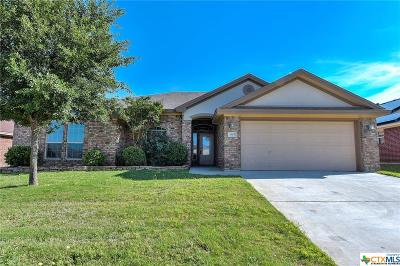 Killeen Single Family Home For Sale: 3905 Salt Fork Drive