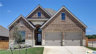 San Antonio Single Family Home For Sale: 14719 Runnig Wolf
