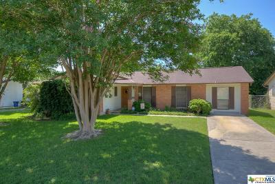Schertz Single Family Home For Sale: 1044 Gettysburg Drive