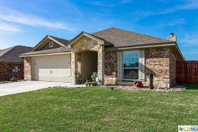Killeen Single Family Home For Sale: 2600 Hector Drive