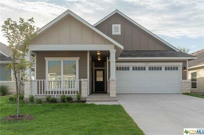 Bell County Single Family Home For Sale: 617 Fair Springs Drive