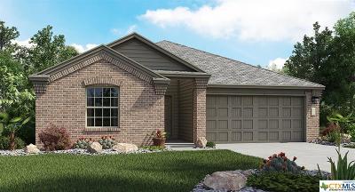 Single Family Home For Sale: 3707 Endicott