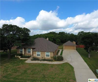 Belton Single Family Home For Sale: 2503 Twin Ridge Court