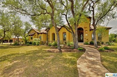 Georgetown Single Family Home For Sale: 1011 Lucinda Terrace