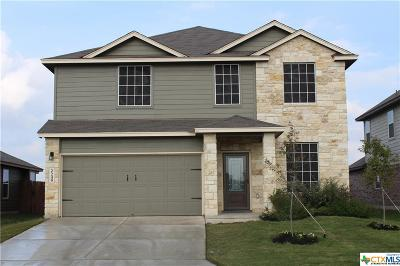 New Braunfels Single Family Home For Sale: 2249 Lighthouse Drive
