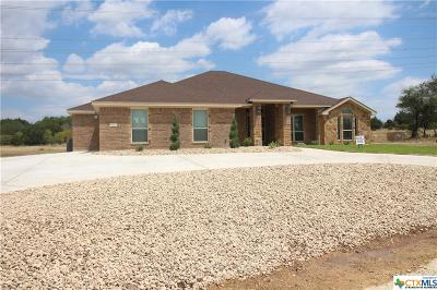 Lampasas County Single Family Home For Sale: 872 Cr 4772