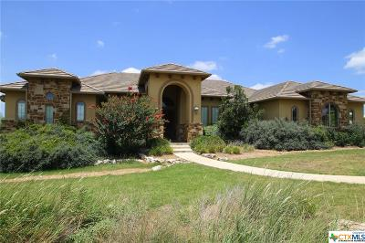 New Braunfels Single Family Home For Sale: 1315 Vintage