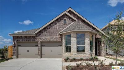 San Marcos TX Single Family Home For Sale: $299,900
