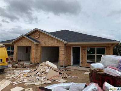 Killeen Single Family Home For Sale: 4200 Ivory Lane