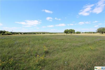 Burnet  Residential Lots & Land For Sale: 4340 Fm 963