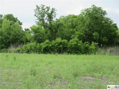 Heidenheimer TX Residential Lots & Land For Sale: $160,000