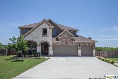 Schertz Single Family Home For Sale: 2980 Sunridge Drive