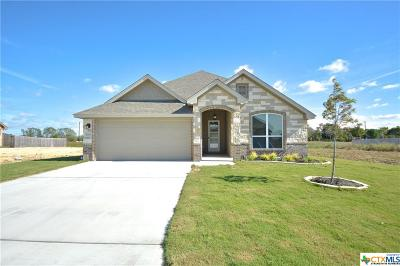 Temple TX Single Family Home For Sale: $245,900