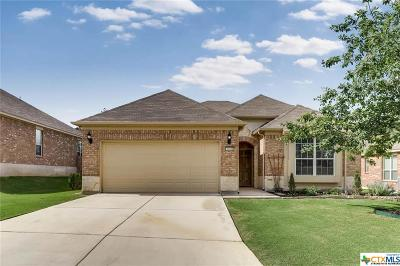 San Antonio Single Family Home For Sale: 1010 Windy Pond