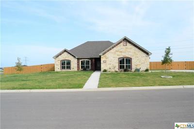 Salado Single Family Home For Sale: 4201 Green Creek