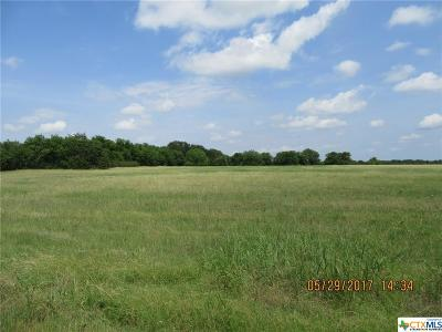 Belton Residential Lots & Land For Sale: 7095 Armstrong