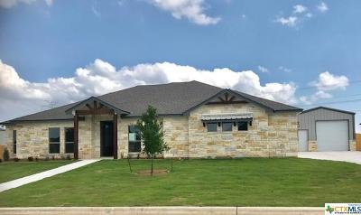 Salado Single Family Home For Sale: 4205 Green Creek