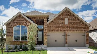 San Antonio Single Family Home For Sale: 14834 Flint Glen
