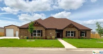 Salado Single Family Home For Sale: 4013 Big Brooke