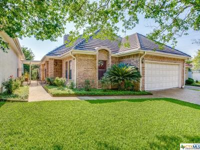 San Antonio Single Family Home For Sale: 19110 E Birdsong