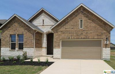 Cibolo Single Family Home For Sale: 204 Kildare