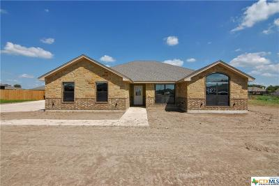 Salado TX Single Family Home For Sale: $294,000