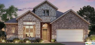 Cibolo Single Family Home For Sale: 216 Kildare