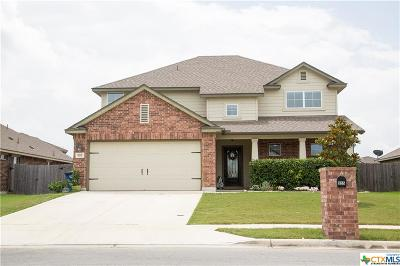 New Braunfels Single Family Home For Sale: 955 Divine Way
