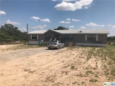 San Antonio Single Family Home For Sale: 1065 Spur Ridge
