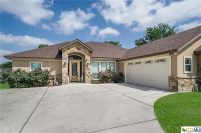 New Braunfels Single Family Home For Sale: 375 River Park Drive