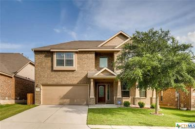 Cibolo Single Family Home For Sale: 373 Prickly Pear