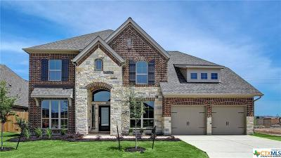 Seguin Single Family Home For Sale: 2913 Glen View
