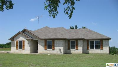 Coryell County Single Family Home For Sale: 487 Indian Creek