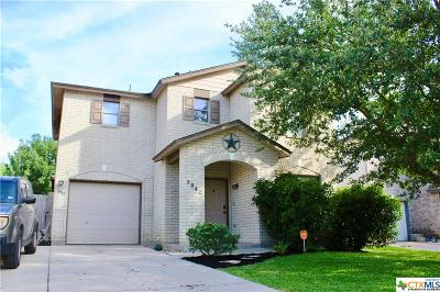 New Braunfels Single Family Home For Sale: 3842 Cherokee