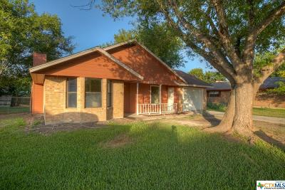 New Braunfels Single Family Home For Sale: 1105 Lazy