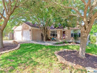 Round Rock Single Family Home For Sale: 3807 Eagles Nest