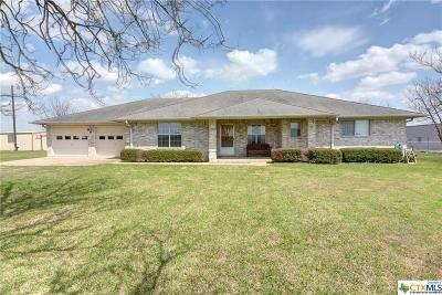 Williamson County Single Family Home For Sale: 401 County Road 469